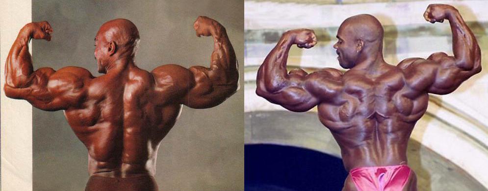 Длина мышц