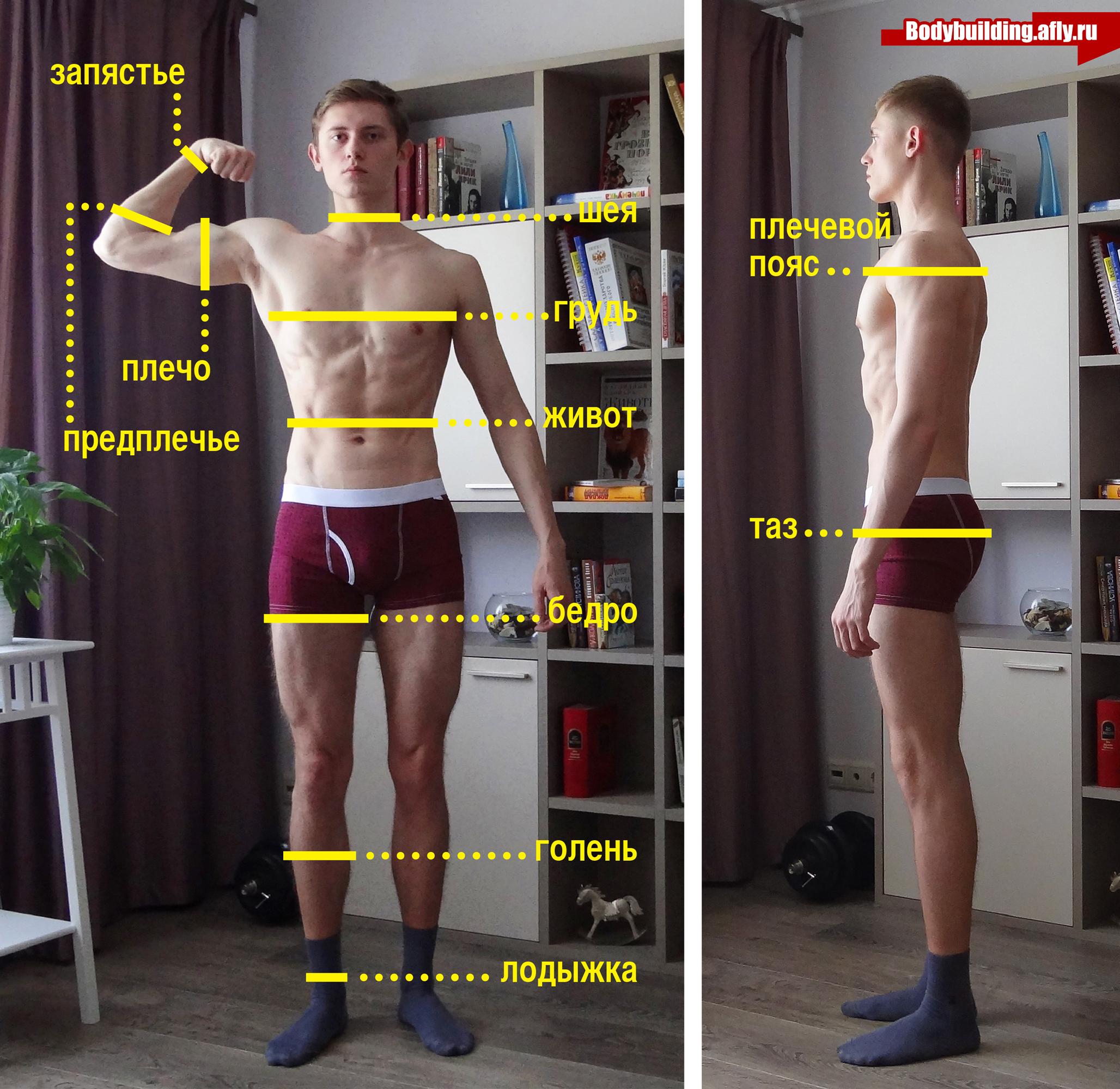 Замеры тела